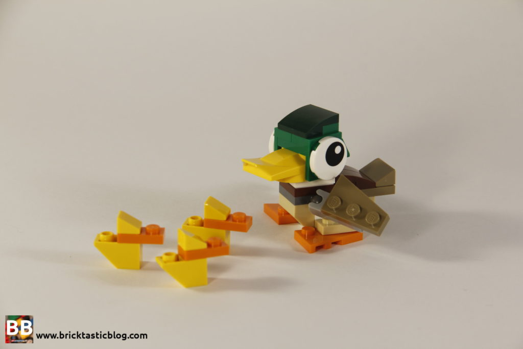 31044: Park Animals Ducks