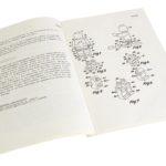 Denmark Minifigure Patent 1977
