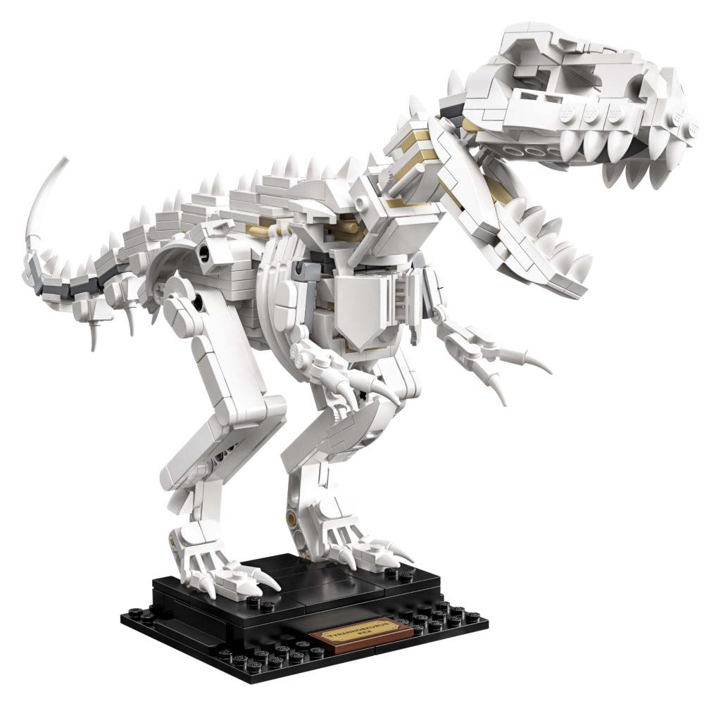 21320 Dinosaur Fossils